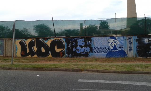 wpid-street-art-jozi-3.jpg